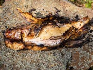 Рыбка – гриль в углях