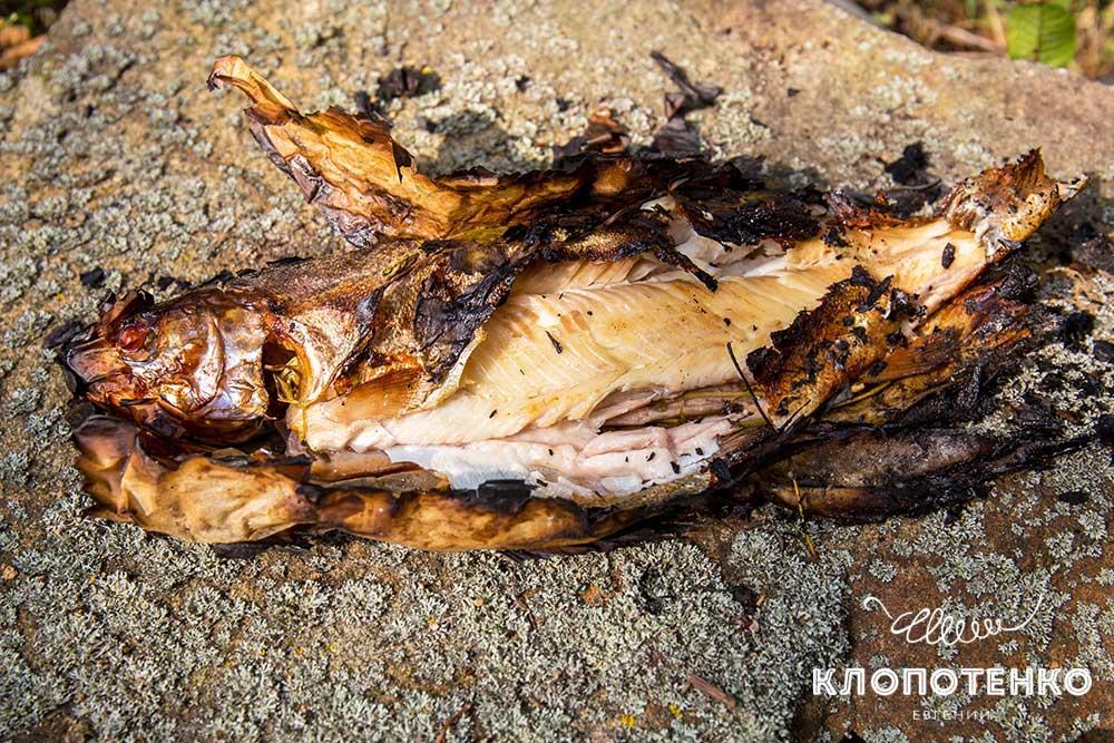 Рыба гриль в углях